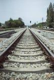 Vista de la longitud del ferrocarril con el árbol verde en el lado izquierdo y derecho del ferrocarril Imagen filtrada fotografía de archivo
