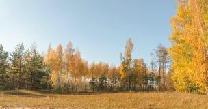 Vista de la mañana de las dunas en octubre Fotografía de archivo libre de regalías