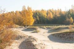 Vista de la mañana de las dunas en octubre Imágenes de archivo libres de regalías