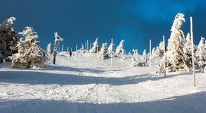 Vista de la manera y del soporte Serak del esquí a campo través Imagenes de archivo