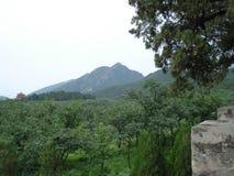 Vista de la montaña Imagen de archivo