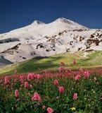 Vista de la montaña Elbrus imágenes de archivo libres de regalías