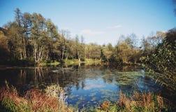 Vista de la orilla del otoño cerca del río Imagen de archivo libre de regalías