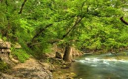 Vista de la orilla del río Imágenes de archivo libres de regalías