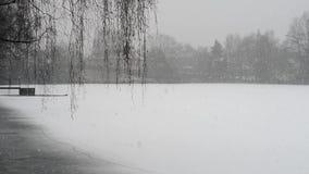 Vista de la peque?a charca durante las nevadas muy pesadas almacen de metraje de vídeo