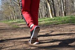vista de la pieza de las piernas de un corredor en el rastro de tierra con el fondo del bosque fotos de archivo libres de regalías