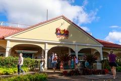 Vista de la plantación de la piña de Dole en Wahiawa, destino del viaje imagen de archivo libre de regalías