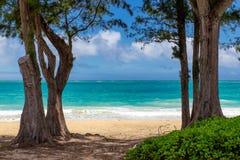 Vista de la playa hermosa con agua de la turquesa entre dos árboles en Waimanalo fotos de archivo libres de regalías