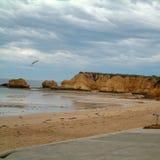 Vista de la playa de Torquay imágenes de archivo libres de regalías