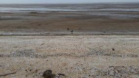 Vista de la playa y del mar Imagen de archivo libre de regalías