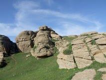 Vista de la pradera Imagenes de archivo