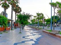 Vista de la 'promenade' con las palmeras en Alghero Cerdeña, Italia Imagen de archivo libre de regalías