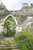 Vista de la puerta gótica con las paredes, trayectoria con las escaleras Foto de archivo libre de regalías