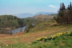vista de la région des lacs Images libres de droits