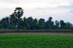 Vista de la región agrícola Imagenes de archivo