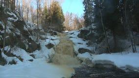Vista de las caídas Jukankoski, mañana de abril Karelia, Rusia almacen de metraje de vídeo