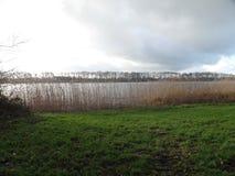 Vista de las cañas y del lago en Maarssen, los Países Bajos imagen de archivo