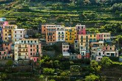 Vista de las casas y de la naturaleza coloridas, pequeña ciudad vieja mediterránea de Manarola del viaje del destino famoso de la Imagenes de archivo