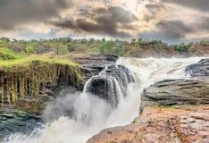 Vista de las cataratas Murchison en el parque nacional del río de Victoria Nile fotografía de archivo
