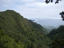 Vista de las cuestas de montaña verdes cubiertas con el bosque Foto de archivo libre de regalías