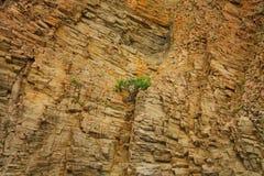 Vista de las formaciones de roca Imágenes de archivo libres de regalías