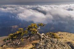 Vista de las montañas brumosas imagen de archivo