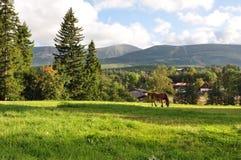 Vista de las montañas gigantes/Karkonosze imagen de archivo libre de regalías