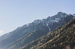 Vista de las montañas nevosas de las montañas y de los árboles coníferos imagen de archivo libre de regalías