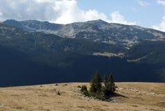 Vista de las montañas de Parang Fotos de archivo libres de regalías
