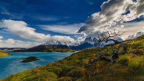 Vista de las montañas de Torres en el parque nacional de Torres del Peine durante salida del sol Otoño en la Patagonia, el lado c fotografía de archivo libre de regalías