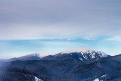 Vista de las montañas y de los bosques coronados de nieve Imagen de archivo libre de regalías