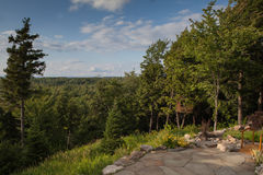 Vista de las montañas y del bosque Foto de archivo