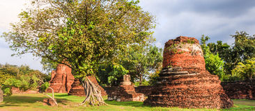 Vista de las pagodas antiguas de la arquitectura religiosa asiática en el parque de Wat Phra Sri Sanphet Historical, provincia de fotos de archivo libres de regalías