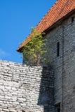 Vista de las torres y de la iglesia de la fortaleza en fondo del cielo. Tallinn. E Fotos de archivo libres de regalías