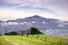 Vista de Las Trampas Regional Wilderness para a montagem Diablo em um dia nebuloso, nublado, área de San Francisco Bay, Califórni imagem de stock royalty free