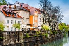 Vista de Ljubljana Foto de archivo libre de regalías