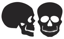 Vista de los cráneos delantero blanco y negro y lateral Imagenes de archivo