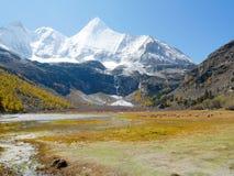 Vista de los picos de montaña y bharals nevados o satinado azul de las ovejas foto de archivo