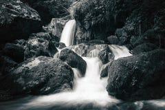 Vista de los rápidos pedregosos en el río de la montaña Imagen de archivo