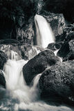 Vista de los rápidos pedregosos en el río de la montaña Foto de archivo