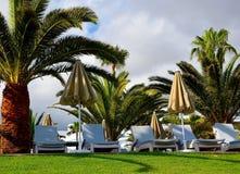 Vista de los sunloungers y de las palmeras de algunas camas en una hierba verde en un club de la playa de Tenerife, islas Canaria foto de archivo