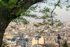 Vista de los tejados de París con el árbol que enmarca a Notre Dame Church en distancia imagen de archivo libre de regalías