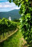 Vista de los viñedos y de St Anna Catholic Church cerca de Soos Sooss imagen de archivo