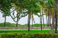 Vista de Miami Beach con las palmeras Fotos de archivo libres de regalías
