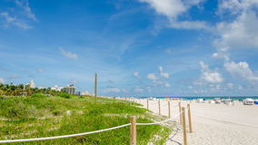 Vista de Miami Beach con las palmeras Imagen de archivo libre de regalías