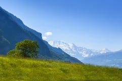 Vista de Mont Blank masive imagem de stock