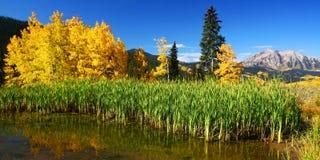 vista de montagne du Colorado Photos libres de droits