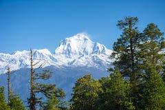 Vista de Mt dhaulagiri imágenes de archivo libres de regalías