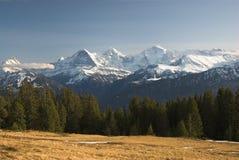 Vista de Niederhorn Imagens de Stock