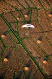 Vista de pájaro de Paramotor Imagen de archivo